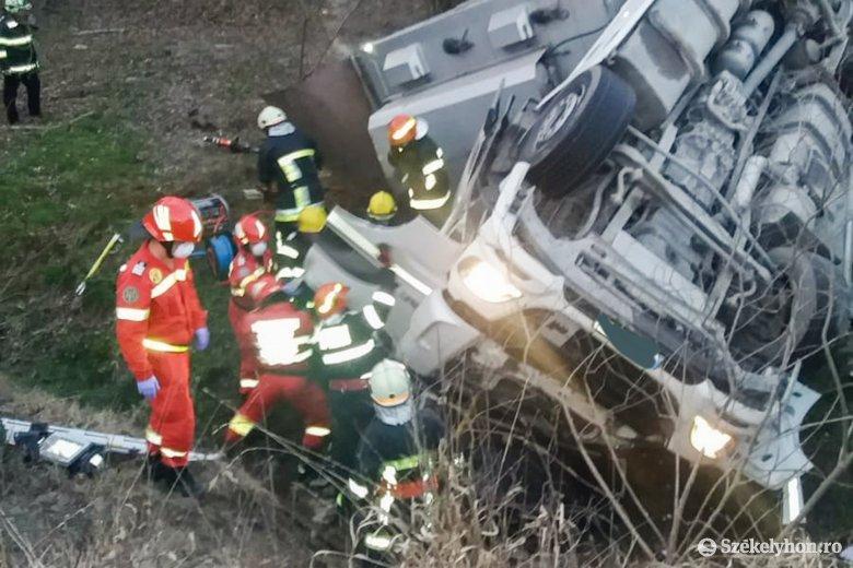Szarvasmarhaszállító kamion borult az árokba, egy személy életét vesztette