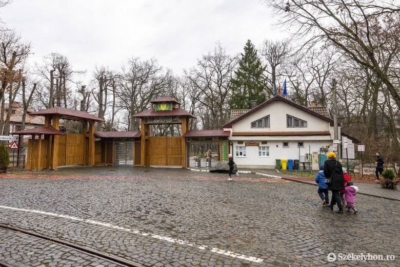 Fertőtlenítették a játszóteret, nyitva marad az állatkert