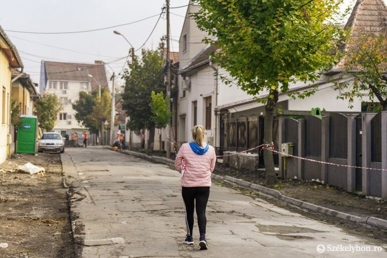 Járdajavítás apropóján vágtak ki fákat, ez viszont felháborította a lakókat