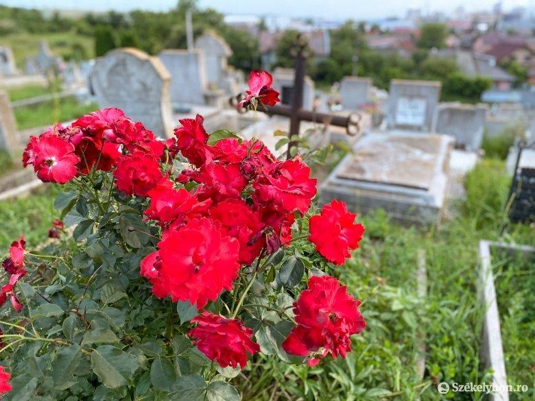 Látványosan megnőtt az elhalálozások száma Erdélyben az idei év első öt hónapjában