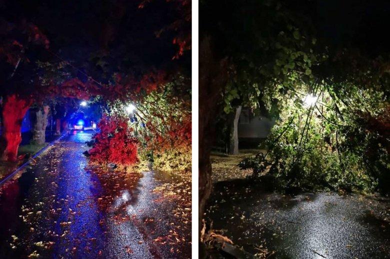 Pusztított a vihar Maros megyében, négyszer is küldtek a telefonokra vészjelzést