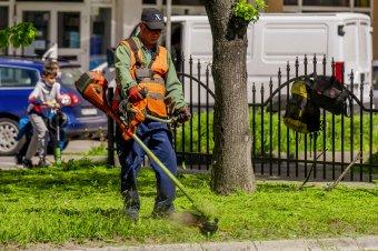 Pázsit helyett térdig érő fű: akadozik a zöldövezetek karbantartása Marosvásárhelyen
