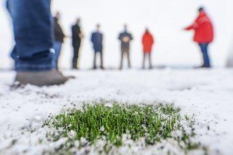 Újjáélesztenék a marosvásárhelyi futballt
